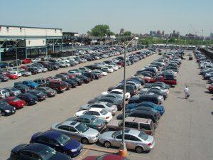 Newton – parkovací software